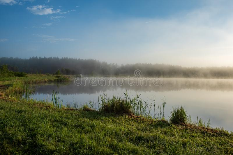 misty morning by the lake stock photo