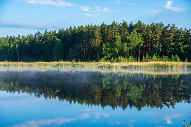 misty morning by the lake stock photography