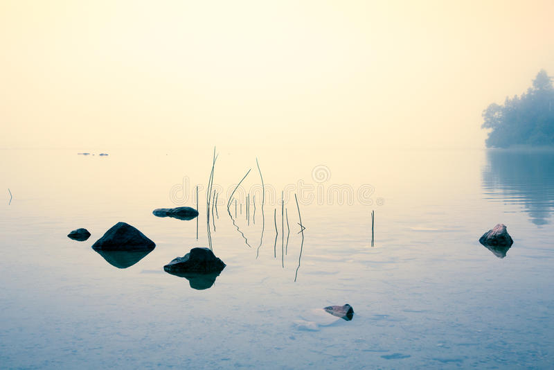 Misty Morning at a Lake stock images