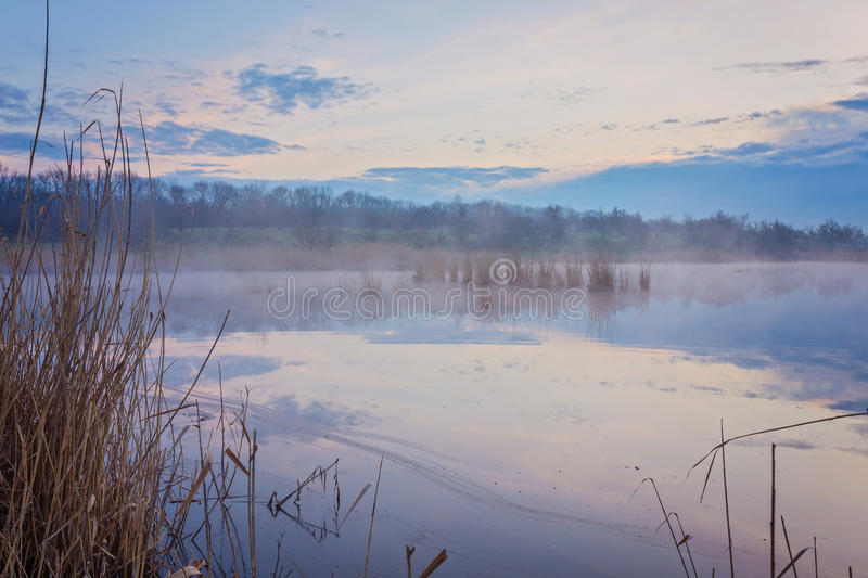 Misty morning at the lake. With houses royalty free stock photos