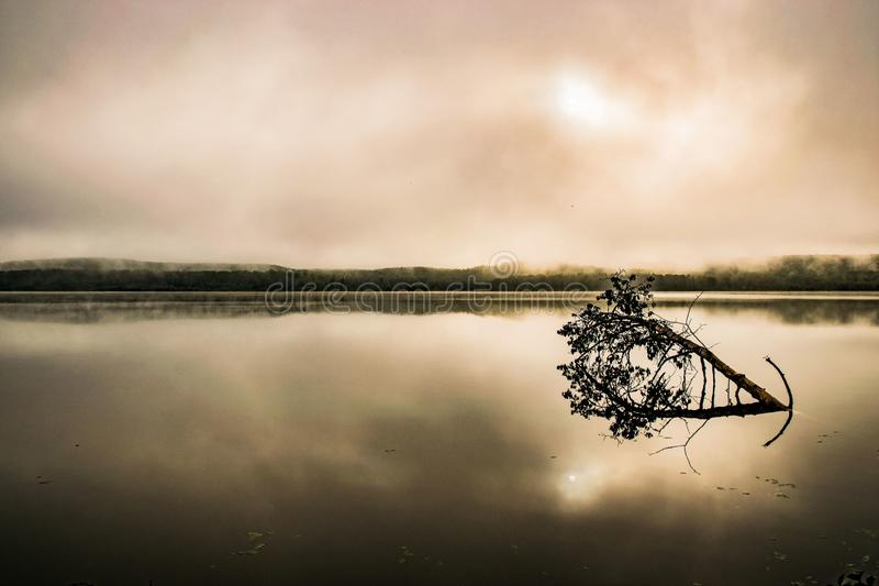 Misty morning at the lake. Longlake, , pronvincial, park royalty free stock image