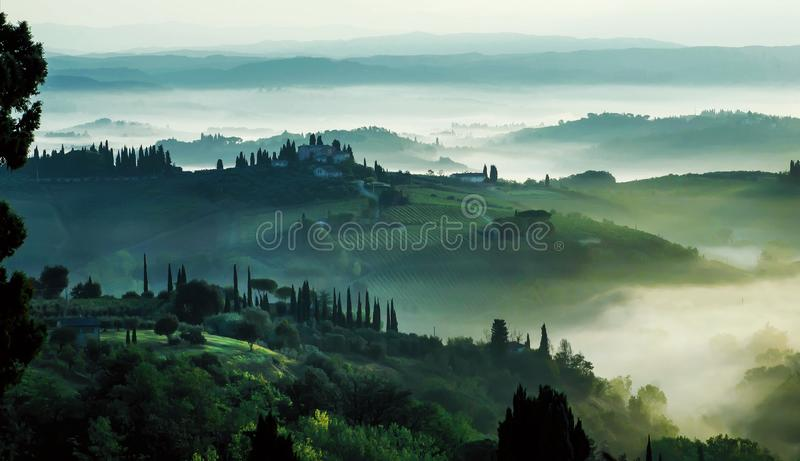 Misty morning landscape, sunrise over hills in Tuscany with garden trees, green hills. Fog in Italian countryside royalty free stock images