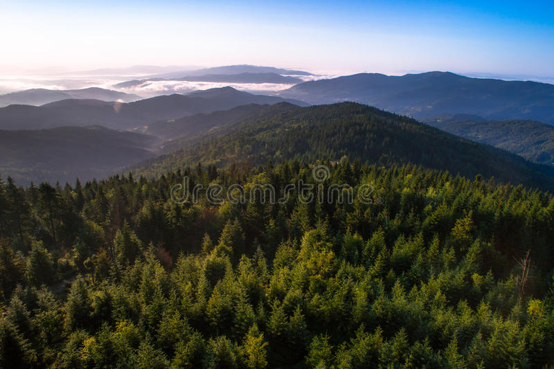 Misty morning in mountains. View from the top of Gorc peak on Gorce Mountains in morning fog royalty free stock photography