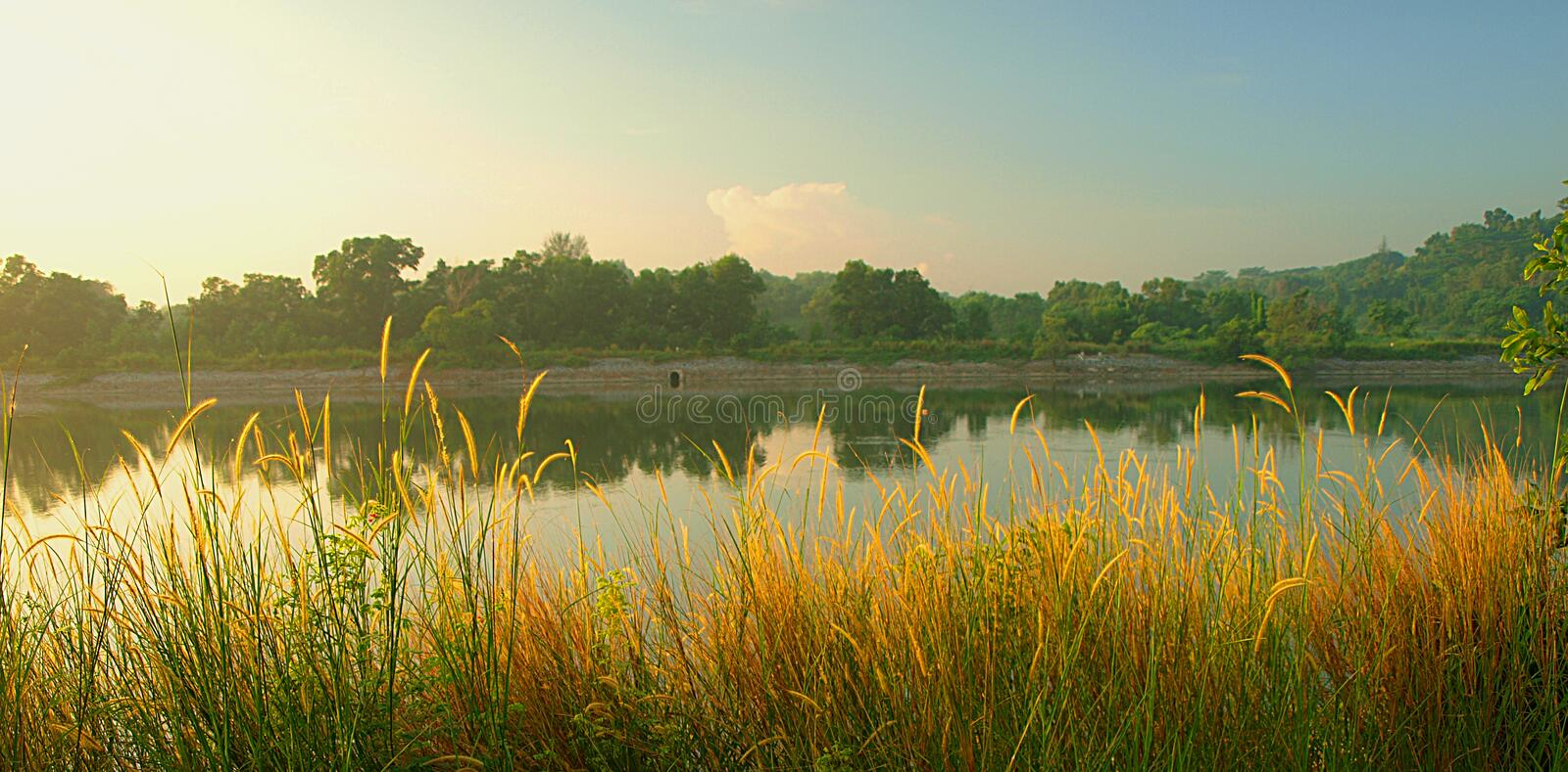 Misty Morning Panorama royalty free stock photography