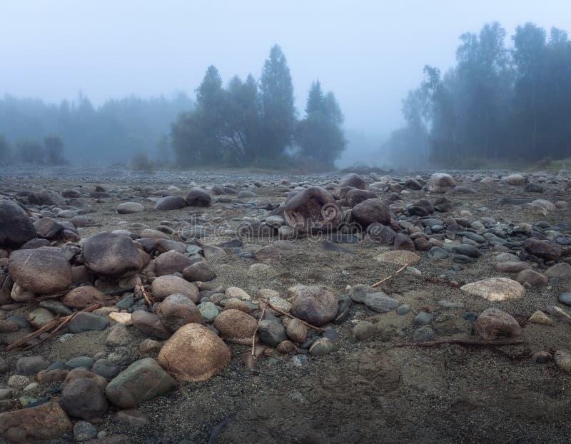 Misty Morning With Rocky Ground en el primero plano y el árbol de hoja perenne Forest Altai Mountains Highland Nature Autumn Land foto de archivo libre de regalías