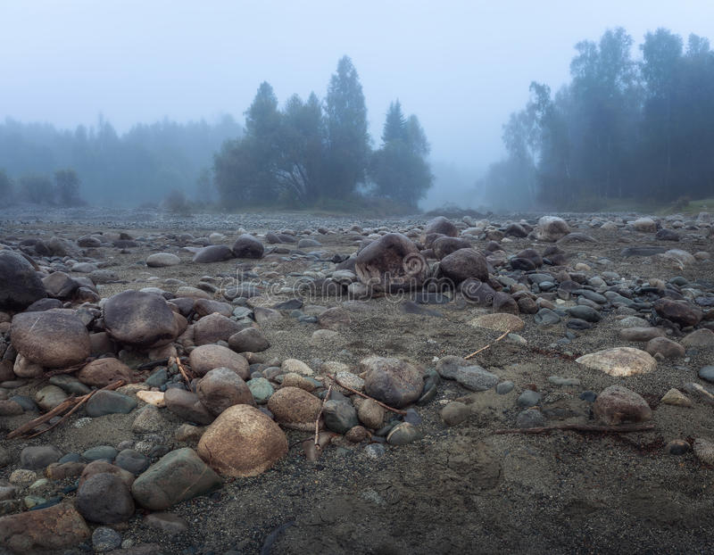 Misty Morning With Rocky Ground på förgrund och evergreen Forest Altai Mountains Highland Nature Autumn Landscape royaltyfri foto