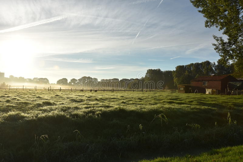 Misty morning. Misty sunny morning in beautiful Zuidoostbeemster stock image