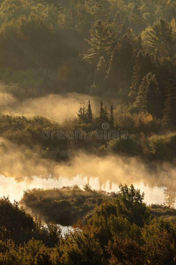 Misty Morning Sunrise at Copper Harbor Michigan. Fog and mist roll across the woods and Garden Creek as the sun rises over Copper Harbor Michigan royalty free stock image