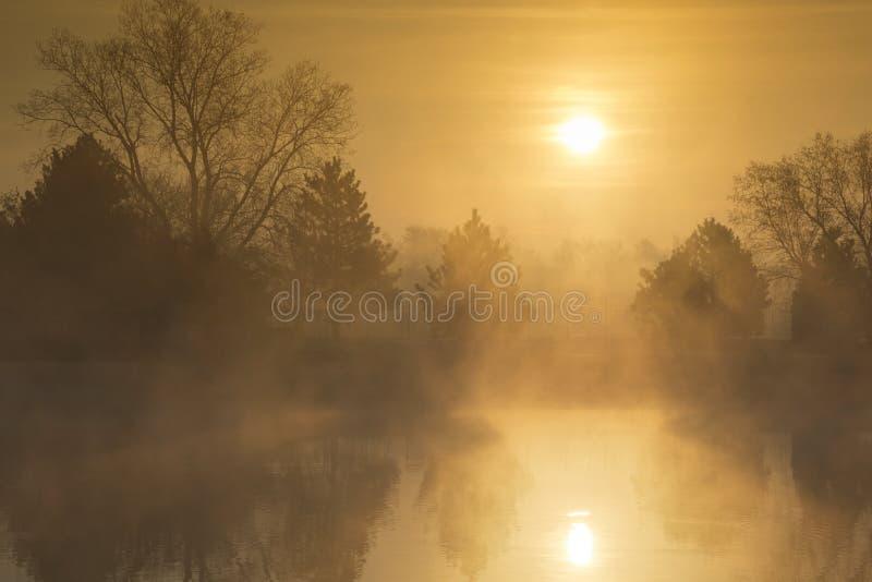 Misty Morning Sunrise d'or une journée de printemps tôt images libres de droits