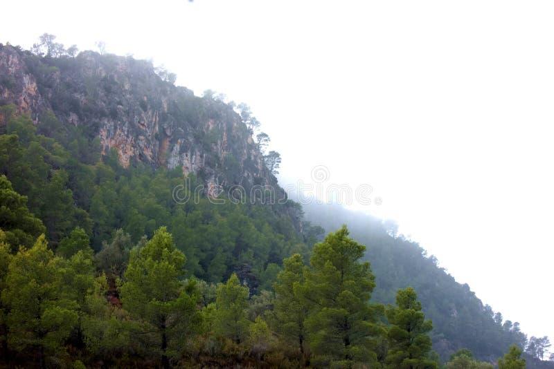 Misty Mountain Cliff royalty-vrije stock fotografie