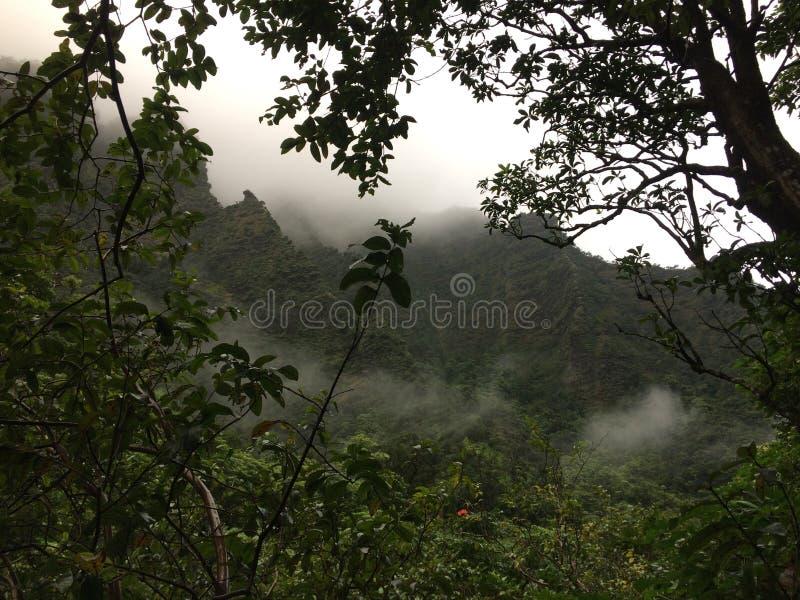 Misty Mountain Cliffs vicino a Hanakapiai cade lungo la costa di NaPali sull'isola di Kauai, Hawai fotografia stock
