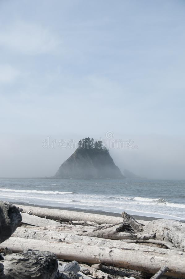 Misty Mountain with Forest and driftwood on the seashore at Rialto Beach. Olympic National Park, WA. Fog rolling in over misty mountain with evergreen pine royalty free stock photography