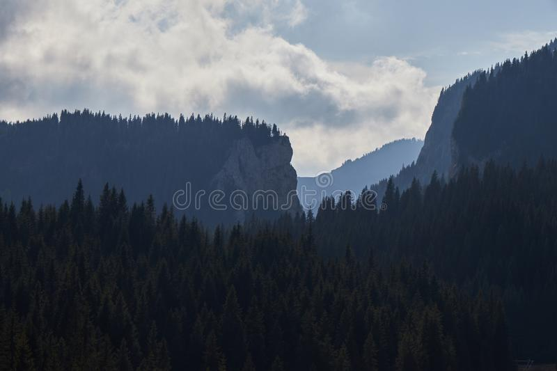Misty mountain and forest stock photos