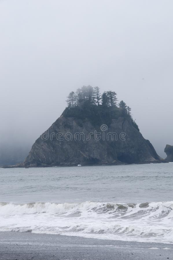 Misty Mountain with Forest on the seashore at Rialto Beach. Olympic National Park, WA. Misty Mountain with evergreen forest with waves crashing on the seashore royalty free stock photos