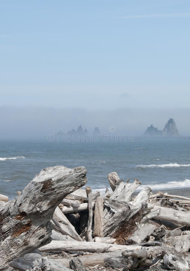Misty Mountain Island with Driftwood at Rialto Beach. Olympic National Park, WA. Misty mountain forested island with driftwood on the seashore at Rialto Beach stock images