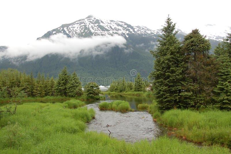 Misty Mountain mit Nebel und kleinem Fluss stockfoto