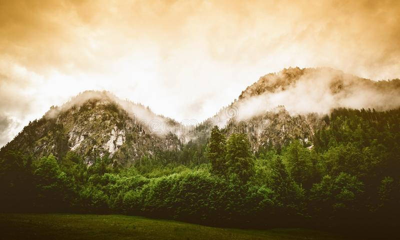 Misty mountain range and forest stock image