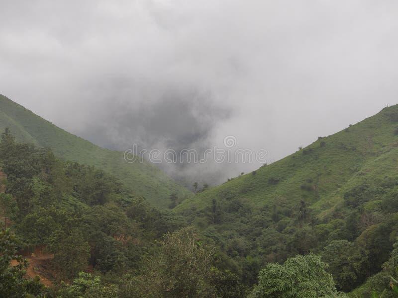 Misty mountain valley royalty free stock photo