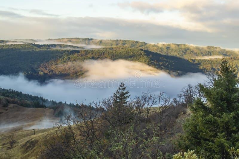 Misty Mountains - la vista fuori sopra le montagne e la nebbia ha riempito la valle nella California del Nord fotografia stock libera da diritti