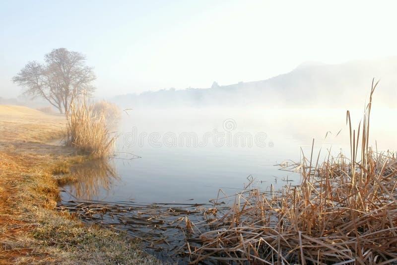 misty nad jezioro. zdjęcie stock
