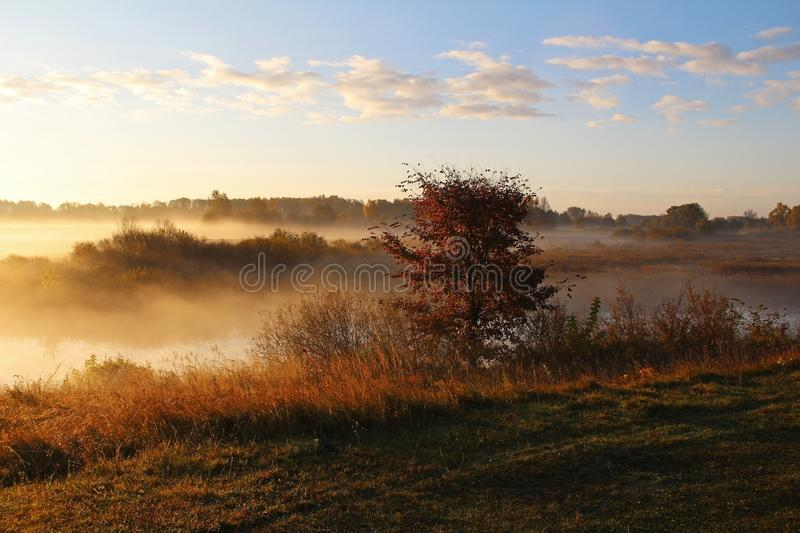 Misty nature landscape on early autumn morning. Russia. royalty free stock photo