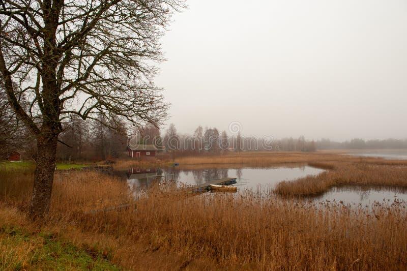 Download Misty November morning stock image. Image of hallsberg - 26577003