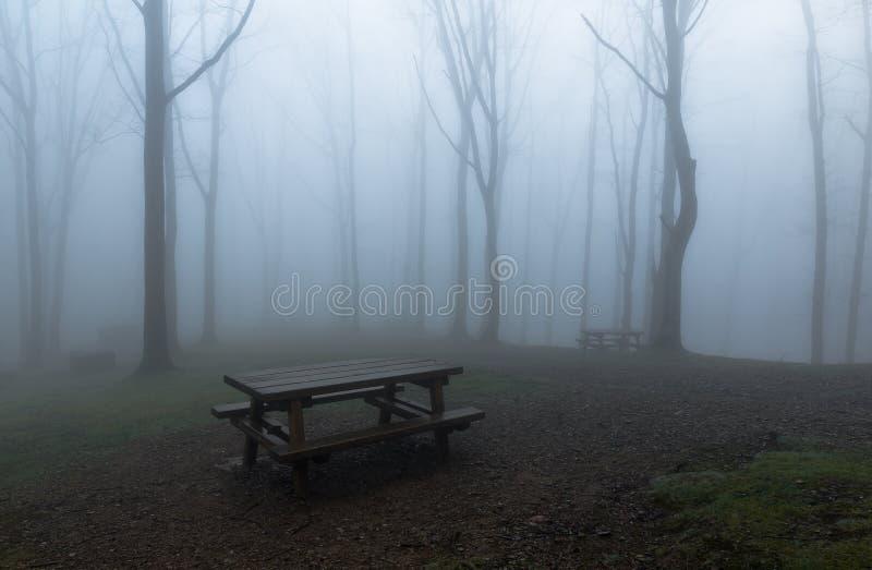 Misty Park lizenzfreie stockfotos