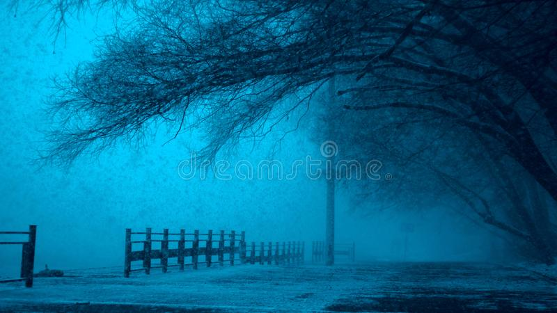Misty path by lake in winter royalty free stock photos