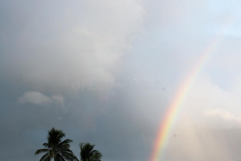 Misty rainbow on a hazy day in a tropical location with palm trees royalty free stock photo