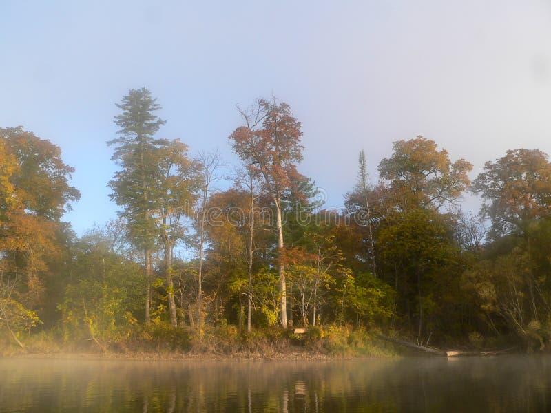 Misty River photographie stock libre de droits