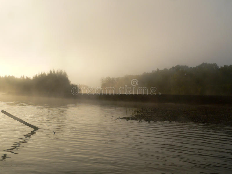 Misty River photographie stock