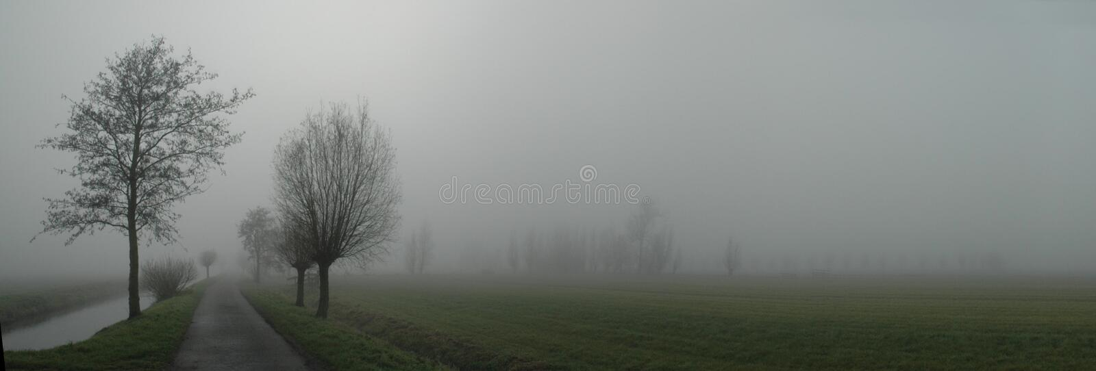 Misty Road Royalty Free Stock Image