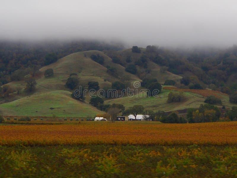 Misty Rolling Hills foto de archivo libre de regalías