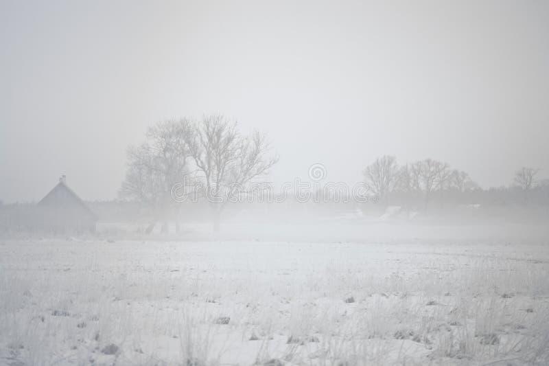 Misty Snowy Morning Landscape i Litauen bygd royaltyfria bilder