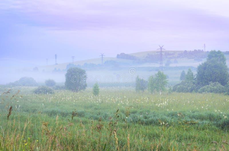 Misty Summer Sunrise in de Bergen: Lang Gras, Dikke Mist, Bomen, de Torens van de Machtslijn en Dramatische Purpere Wolken Groene royalty-vrije stock afbeeldingen