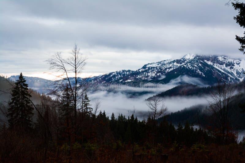 Misty Sunrise Landscape Mountains Trees Forest Hills Valley Morning Spitzingsee Alemania foto de archivo