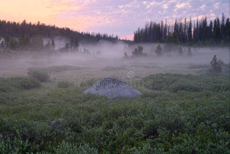 Misty Sunrise nas montanhas de Beartooth fotos de stock