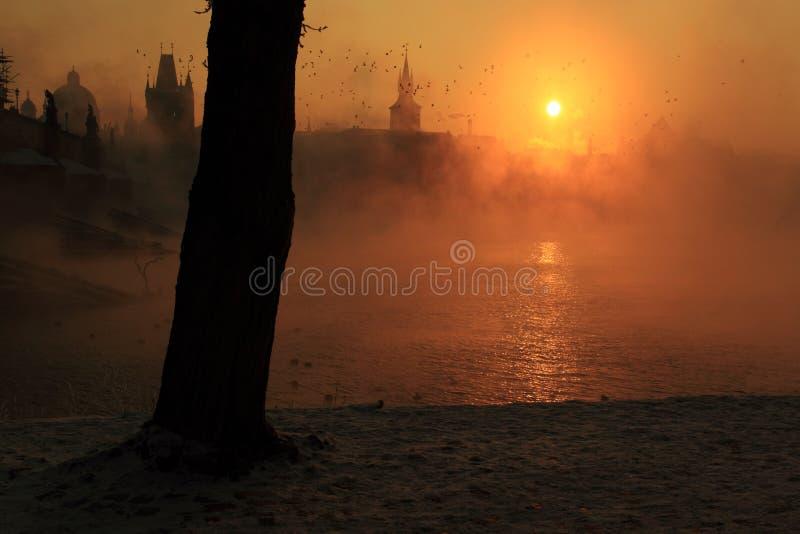 Download Misty sunrise in Prague stock image. Image of moldau - 23329689
