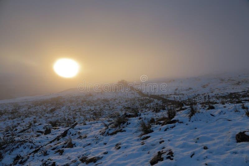 Misty sunset royalty free stock photography
