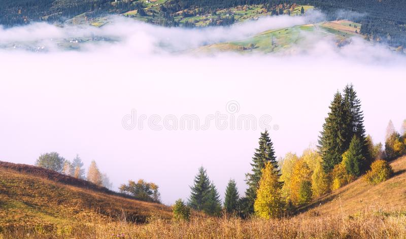 Misty valley covered with deep fog stock photo