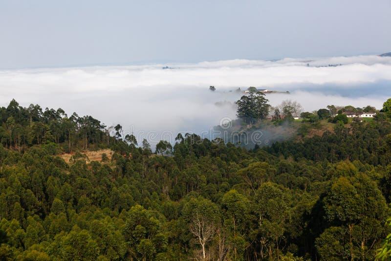 Misty Valley Hills Farmland immagini stock