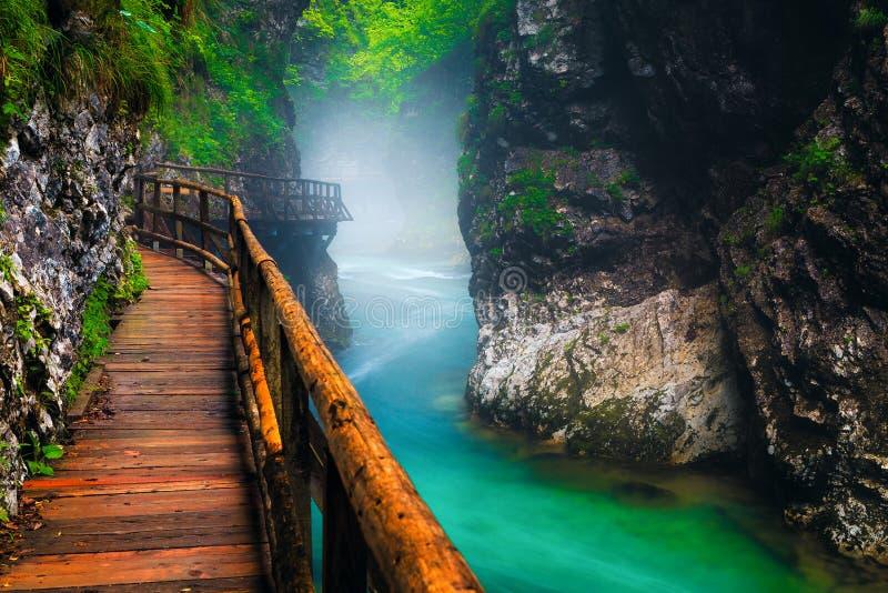 Misty Vintgar Schlucht mit Radovna Fluss nach Regen, Slowenien stockbilder