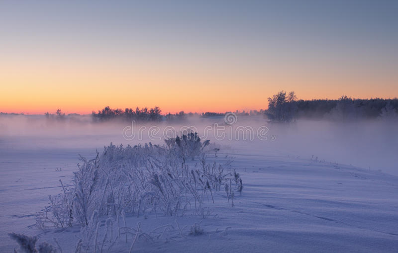 Misty winter dawn. Colorful Christmas background. royalty free stock photography