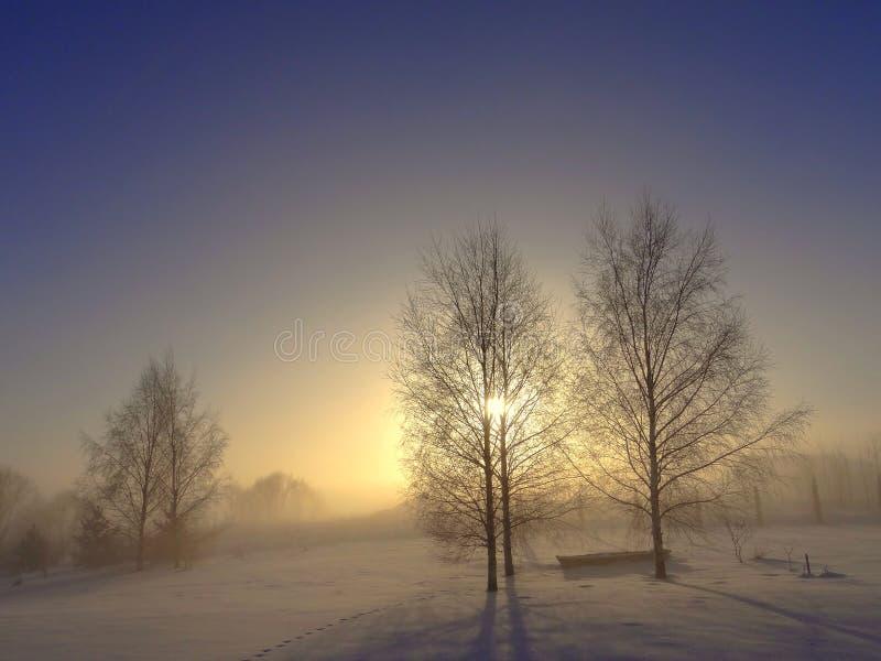 Misty Winter Sunset Paisaje de Lituania foto de archivo