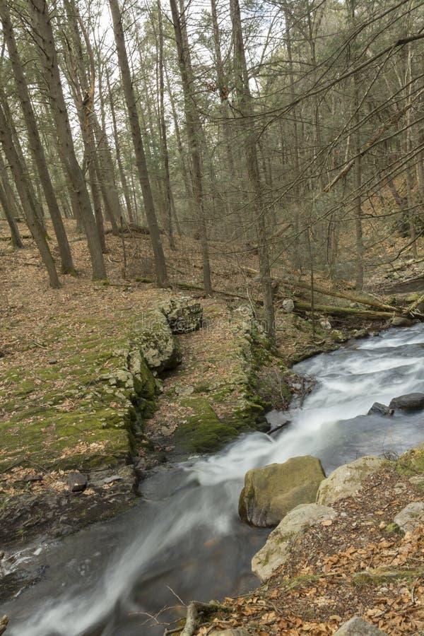 Download Misty Woodland Waterfall stock foto. Afbeelding bestaande uit steen - 54092096