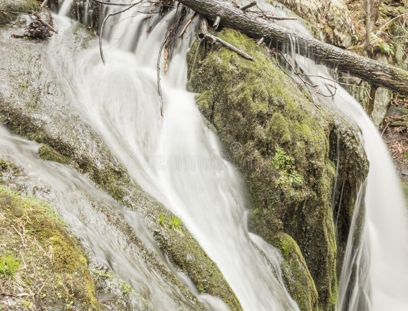 Download Misty Woodland Waterfall stock foto. Afbeelding bestaande uit landschap - 54092146