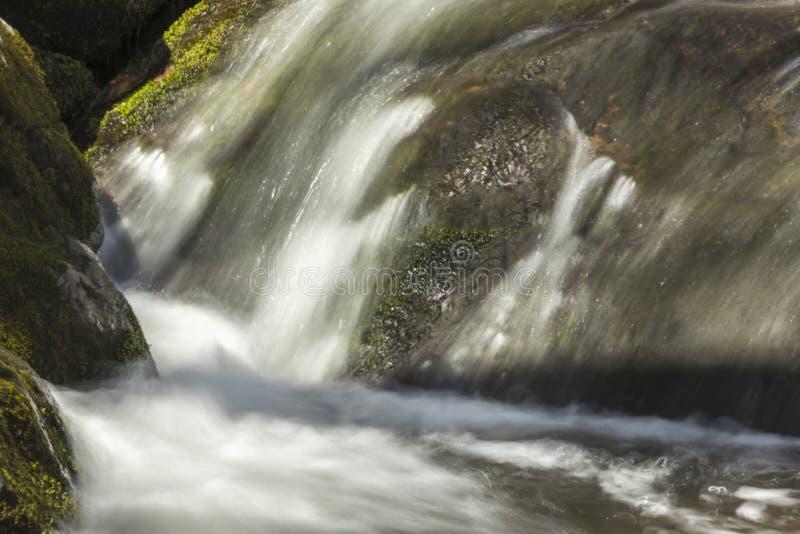 Download Misty Woodland Waterfall stock foto. Afbeelding bestaande uit knars - 54092186