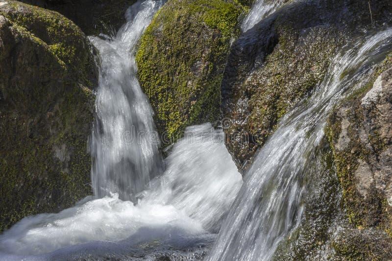 Download Misty Woodland Waterfall stock foto. Afbeelding bestaande uit nevelig - 54092228
