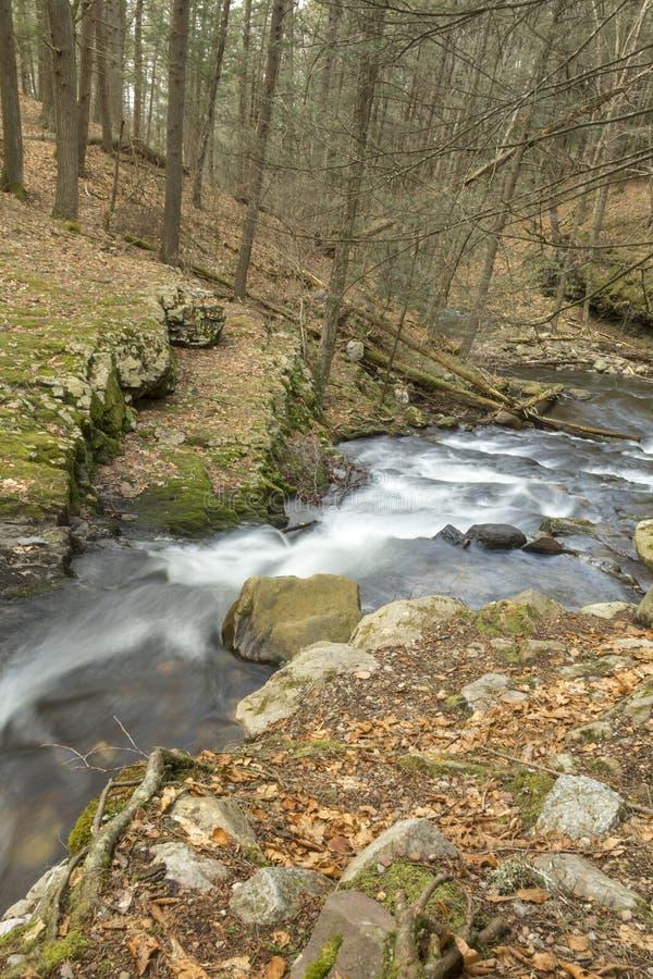 Download Misty Woodland Waterfall stock foto. Afbeelding bestaande uit stroom - 54092320
