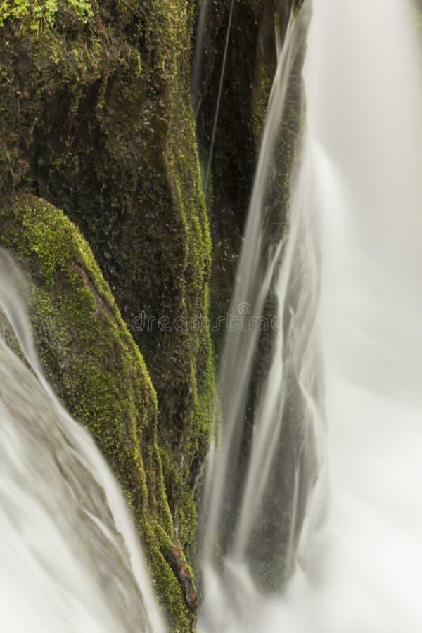 Download Misty Woodland Waterfall stock afbeelding. Afbeelding bestaande uit stroom - 54092439